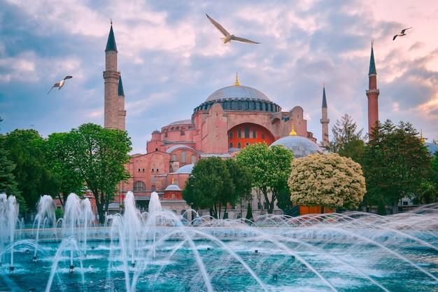 Moskee aya sofia met meeuwen in de lucht