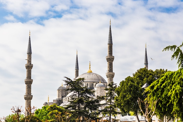 Moskee in istanbul
