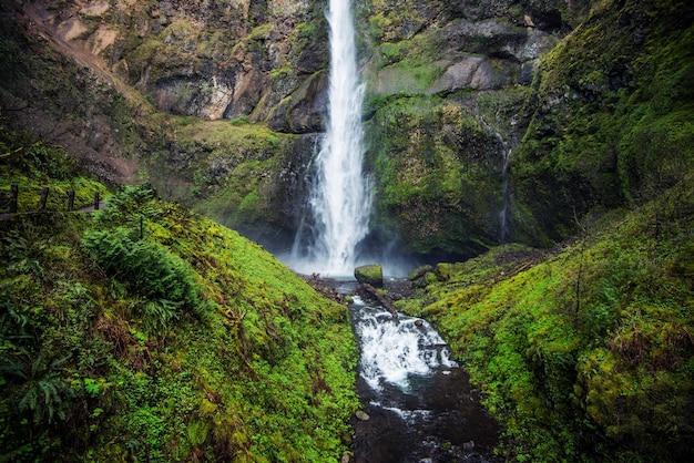 Mossy oregon waterfall