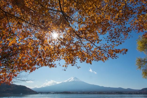 Mountain mt. fuji bij tuin en meer in japan met blauwe wolkenhemel en rode esdoornboom