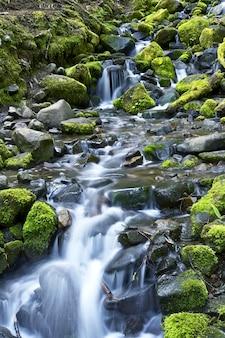 Mountain stream theme
