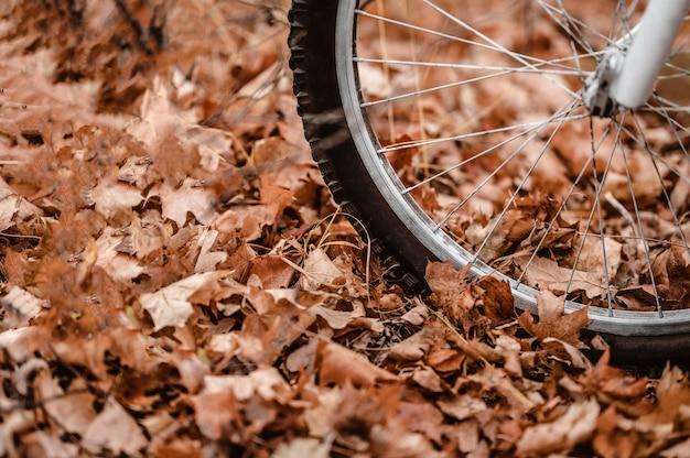 Mountainbike op herfstbladeren