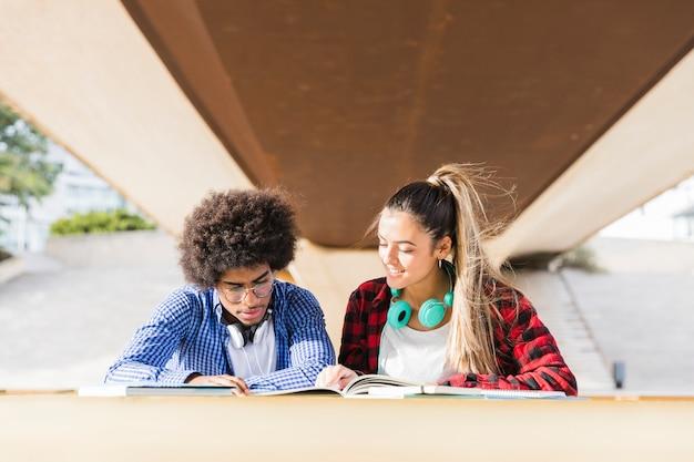 Multi-etnische jonge studenten die samen op campus bestuderen