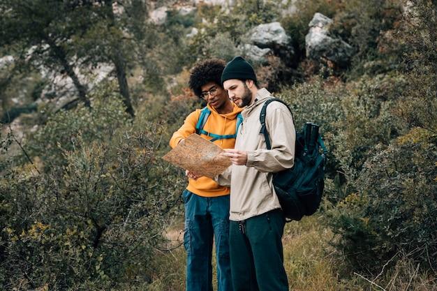 Multi etnische mannelijke wandelaar die kaart in het bos bekijken