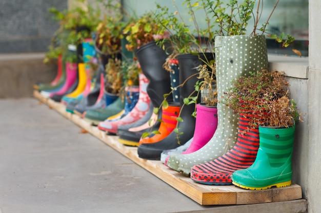 Multi-gekleurde rubberen laarzen als bloempotten met verschillende bloeiende bloemen op de veranda