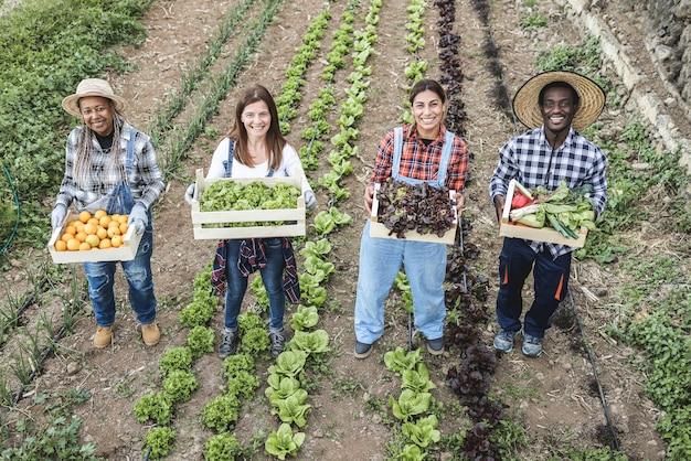 Multi-generatie boerenteam met houten kisten met verse biologische groenten
