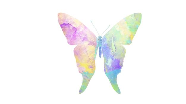 Multicolor aquarel vlinder. tropisch insect voor ontwerp. geïsoleerd op witte achtergrond