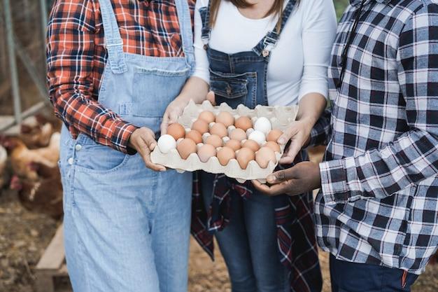 Multiraciale boeren verzamelen biologische eieren uit het kippenhok - focus op