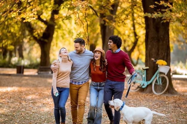 Multiraciale jongeren wandelen in het najaar park en plezier maken