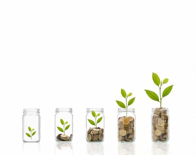 Munten in een fles, vertegenwoordigt de financiële groei.