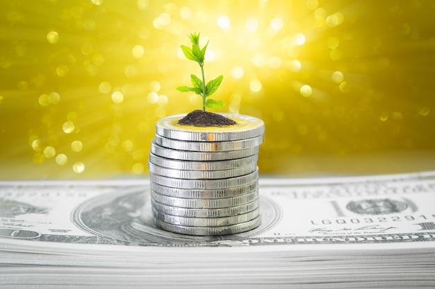 Munten met jonge plant op tafel met gouden achtergrond wazig en geld