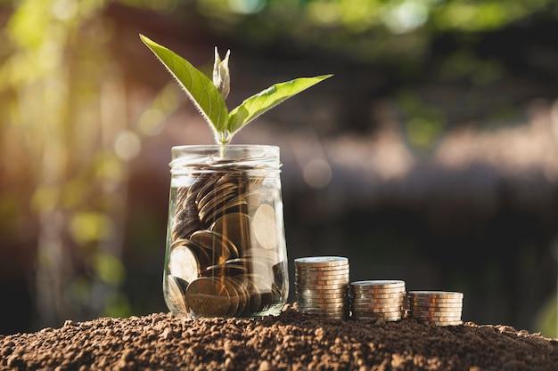 Muntstukken in kruik met de stap van de geldstap het groeien geld, de zaken van conceptenfinanciën