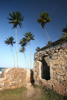 Muren fort in morro do sao paulo, bahia. brazilië
