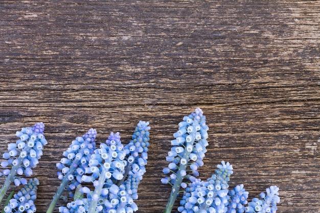 Muscari verse blauwe bloemen op houten achtergrond met kopie ruimte