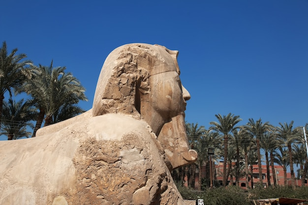 Museum in de stad memphis in egypte