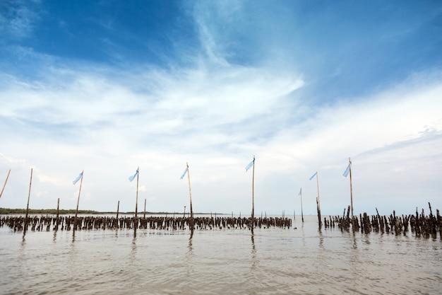 Muur maken van bamboe houten golfbreker op de zeekust met zeegezicht achtergrond