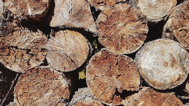 Muur van gestapelde houten logboekenclose-up
