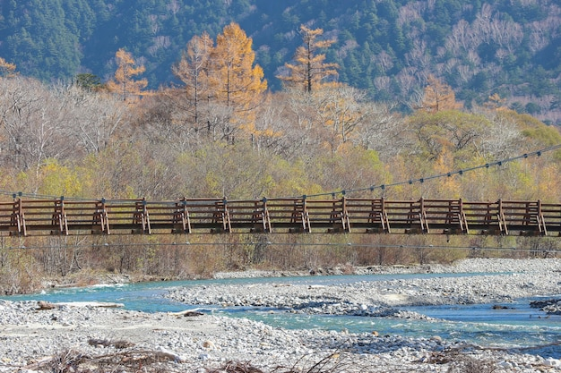 Myojin-brug onder natuurlijk rivier en de herfstbos.