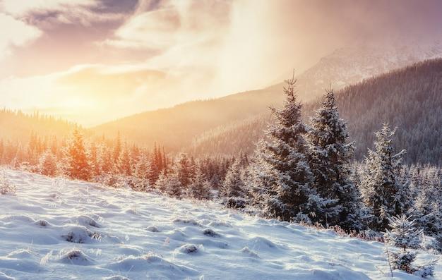 Mysterieus winterlandschap met mist, majestueuze bergen