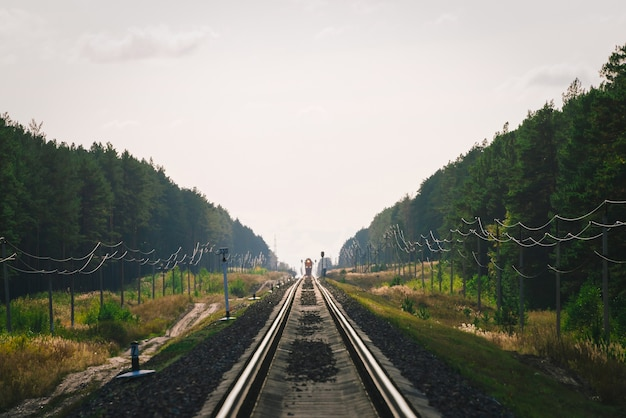Mystieke trein reist per spoor langs bos. spoorwegverkeerslicht en locomotief op spoorweg in afstand