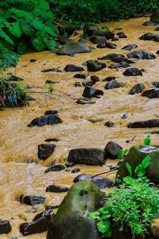 Na een zware regenbui, vult modderige bruine waterreproductie een kleine stroom