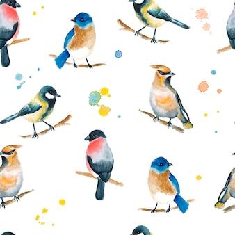 Naadloze aquarel patroon met vogels
