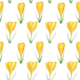 Naadloze patroon gele krokus aquarel botanische illustratie. lente bloem bloemen achtergrond