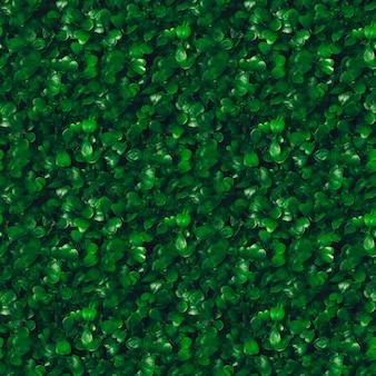 Naadloze patroon groen gras textuur achtergrond. starweed -winterkruid, vogelmuur, satijnbloem,