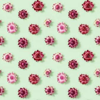 Naadloze patroon met close-up knop van droge bloemen, kleine rode bloesems op groen.