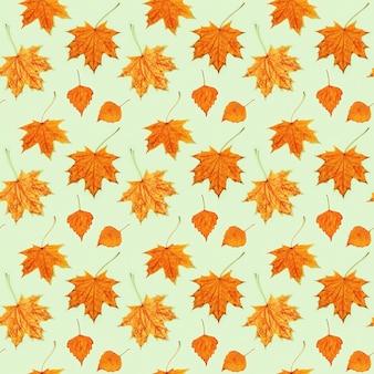 Naadloze patroon van prachtige herfstbladeren van esdoorn en berk