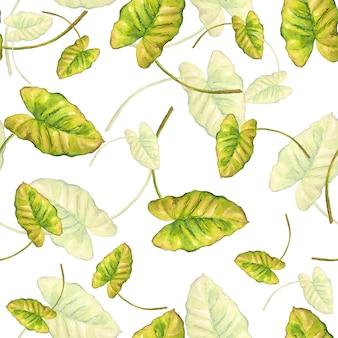 Naadloze patroon van tropische bladeren klimplant aquarel geschilderd op wit