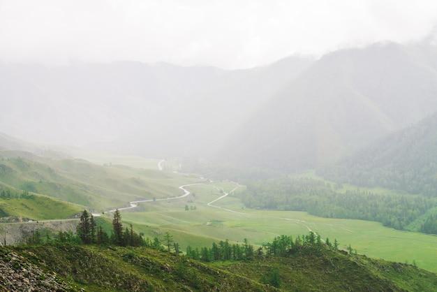 Naaldbomen van kronkelige weg in bergachtig terrein