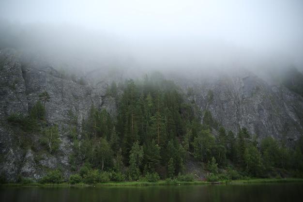 Naaldbos en rotsen op rivieroever in ochtendmist