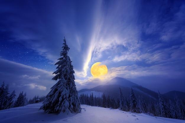 Nacht winterlandschap met een volle maan en besneeuwde sparren in de bergen