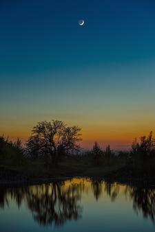 Nachtelijke hemel met de maan na zonsondergang. landschap met een boom aan het meer.
