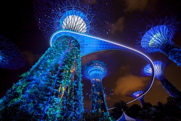 Nachtlichtshow verlichting in garden by the bay
