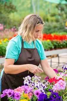 Nadenkende blonde vrouw die bloemenplanten in potten bekijkt