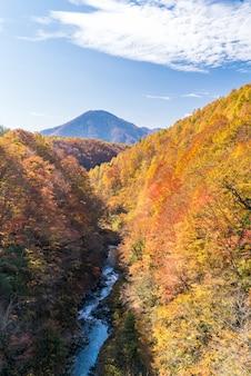 Nakatsugawa fukushima herfst