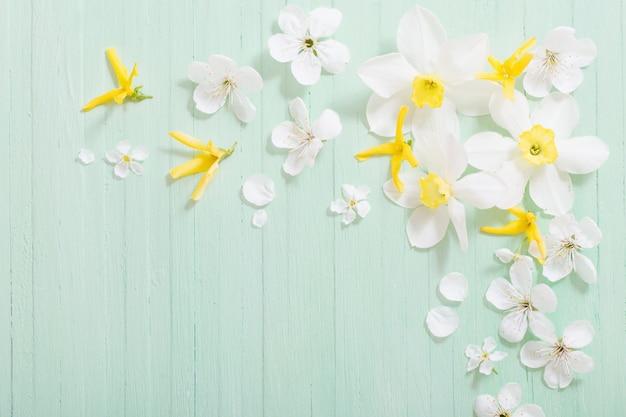Narcissen en kersen bloemen op groene houten achtergrond