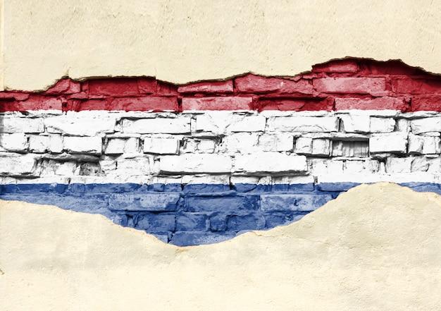 Nationale vlag van nederland op een bakstenen achtergrond. bakstenen muur met gedeeltelijk vernietigde pleister, achtergrond of textuur.