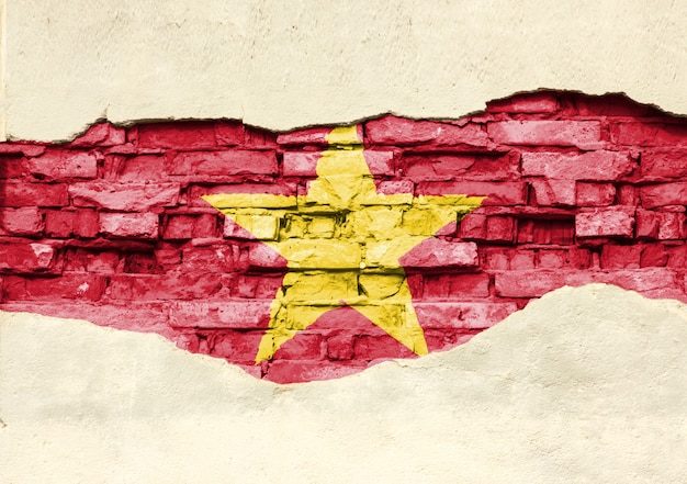 Nationale vlag van vietnam op een bakstenen achtergrond. bakstenen muur met gedeeltelijk vernietigde pleister, achtergrond of textuur.