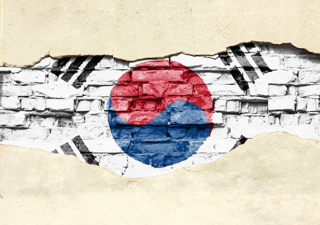 Nationale vlag van zuid-korea op een bakstenen achtergrond. bakstenen muur met gedeeltelijk vernietigd gips, achtergrond of textuur.