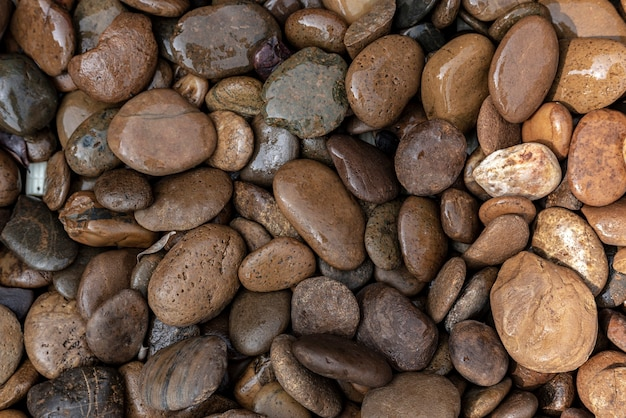Natte kiezels en rotsen op de grond