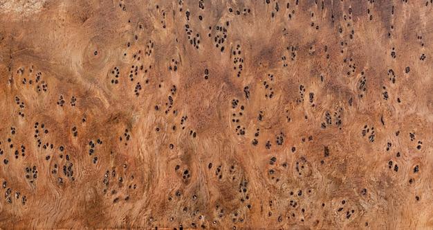 Nature burl hout gestreepte textuur