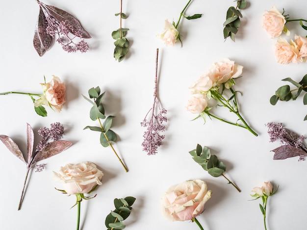 Natuur creatieve compositie van verschillende geschilderde bladeren, eucalyptus en rozen op een wit