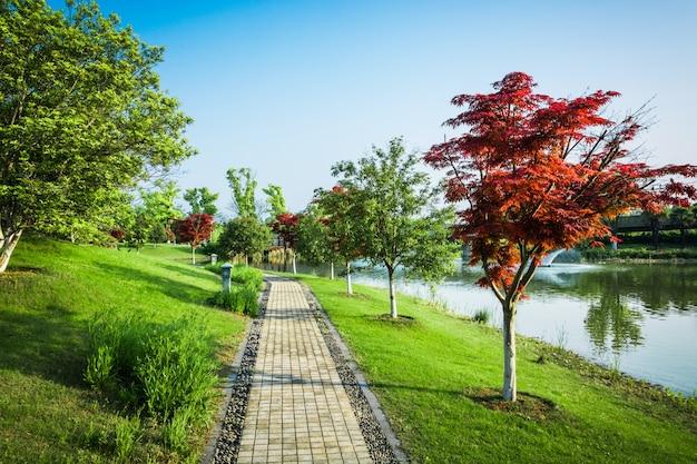 Natuur openlucht park en straat weg wandelpad