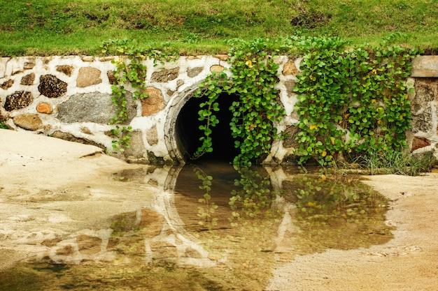 Natuur park achtergrond met tunnel
