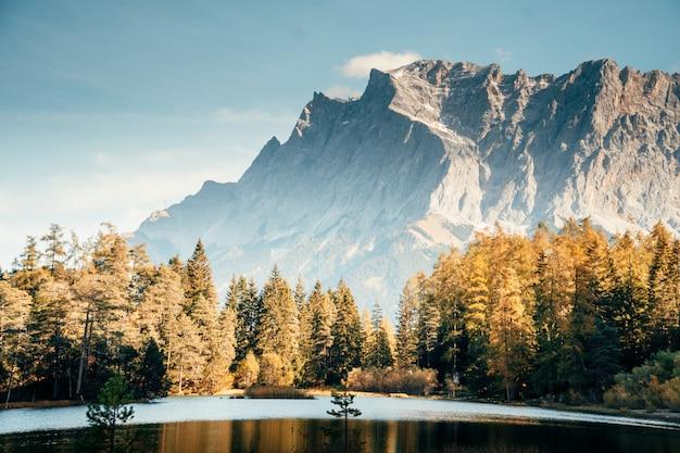 Natuur selectieve focus, selectieve focus op onderwerp, achtergrondonscherpte, in de loop van de tijd natuur geweldige mooie nieuwe prachtig foto
