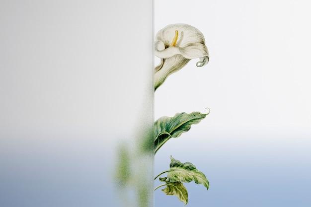 Natuurachtergrond met bloem achter patroonglas