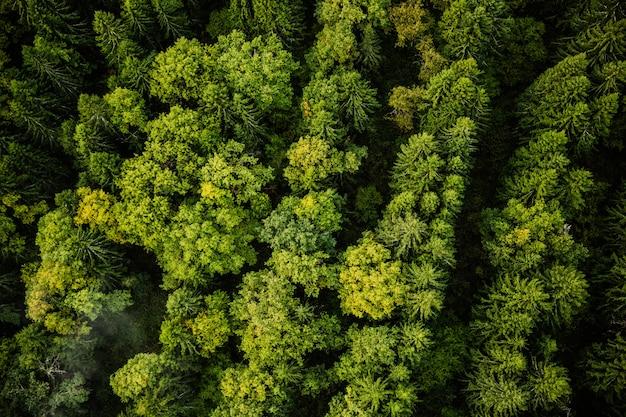 Natuurfotografie vanuit de lucht